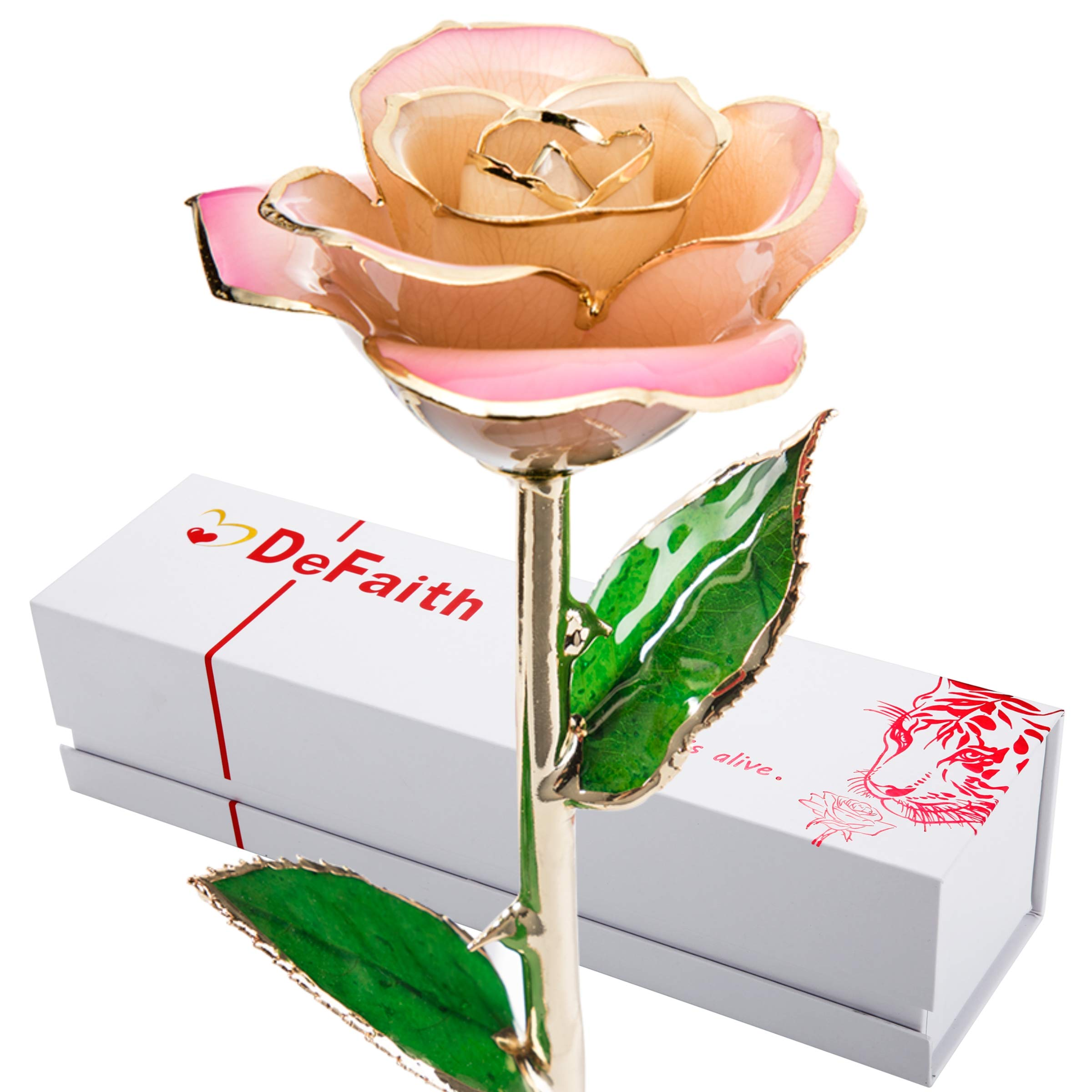 DEFAITH 24K Gold Dipped Real Rose Gifts, Best Wedding Anniversary Valentines Day Love Gift for Her Wife Girlfriend Spouse, Pink White with Stand by DEFAITH