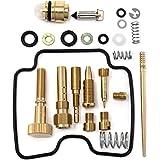 DP 0101-025 Carburetor Rebuild Repair Parts Kit Compatible with Can-Am Bombardier