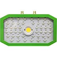 1000W COB Lámparas de Cultivo de Plantas, Luces