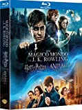 Wizarding World 9 Film Collection
