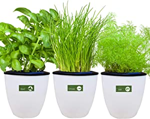 Environet Self Watering Planter with Heirloom Herb Seeds and Coco Potting Soil, Indoor Herb Garden Growing Kit, Modern Decorative White Garden Plant Kit, 3 Pack(Basil, Chives, Dill)