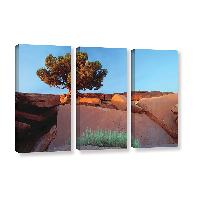 ArtWall Cody Yorks Bokeh 1 Artmetalz Aluminum Print Artwork 24 by 36-Inch