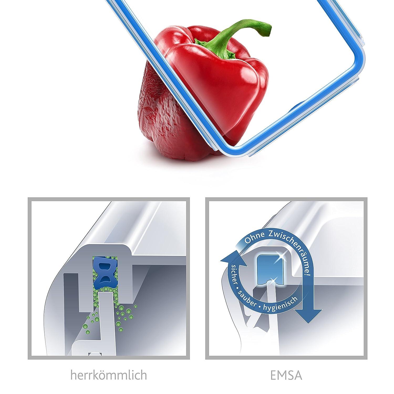 Transparente y Azul Emsa Clip /& Close Conservador Herm/ético de Pl/ástico Rectangular de 1,6 L