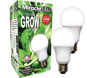 Miracle LED Commercial Hydroponic Ultra Grow Lite - Replaces up to 150W - Daylight White Full Spectrum LED Indoor Plant Growing Light Bulb For DIY Horticulture & Indoor Gardening (604273) 2 Pack