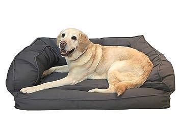 Ortopédico de Espuma de Memoria en la Cama del Perro (XL, color Gris,