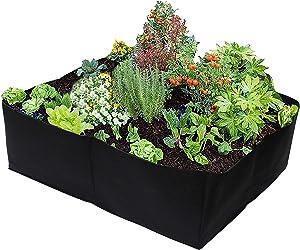 Gardzen 2 Pack Divided Raised Vegetable Bed, Square Foot Gardening 2Feet x 2Feet - Having Your Own Garden