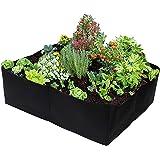 Gardzen Divided Raised Vegetable Bed, Square Foot Gardening 2Feet x 2Feet - Having Your Own Garden