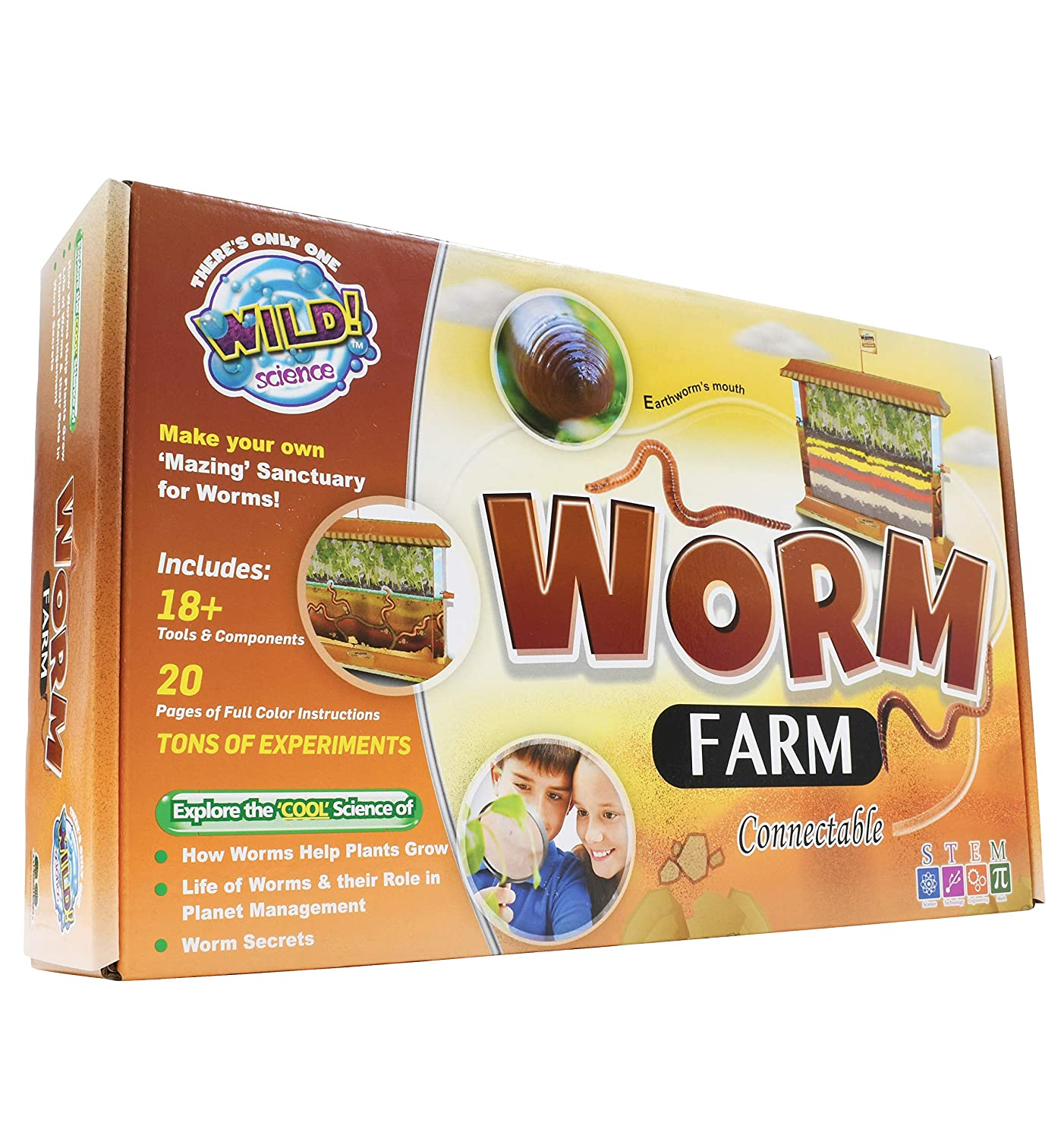 WILD! Science - WS27 Worm Farm - Ages 6+ - In Home Learning Science Kit - Easy Assembly - Worm Farm, Colored Sand, Accessories and Education & Instruction Booklet