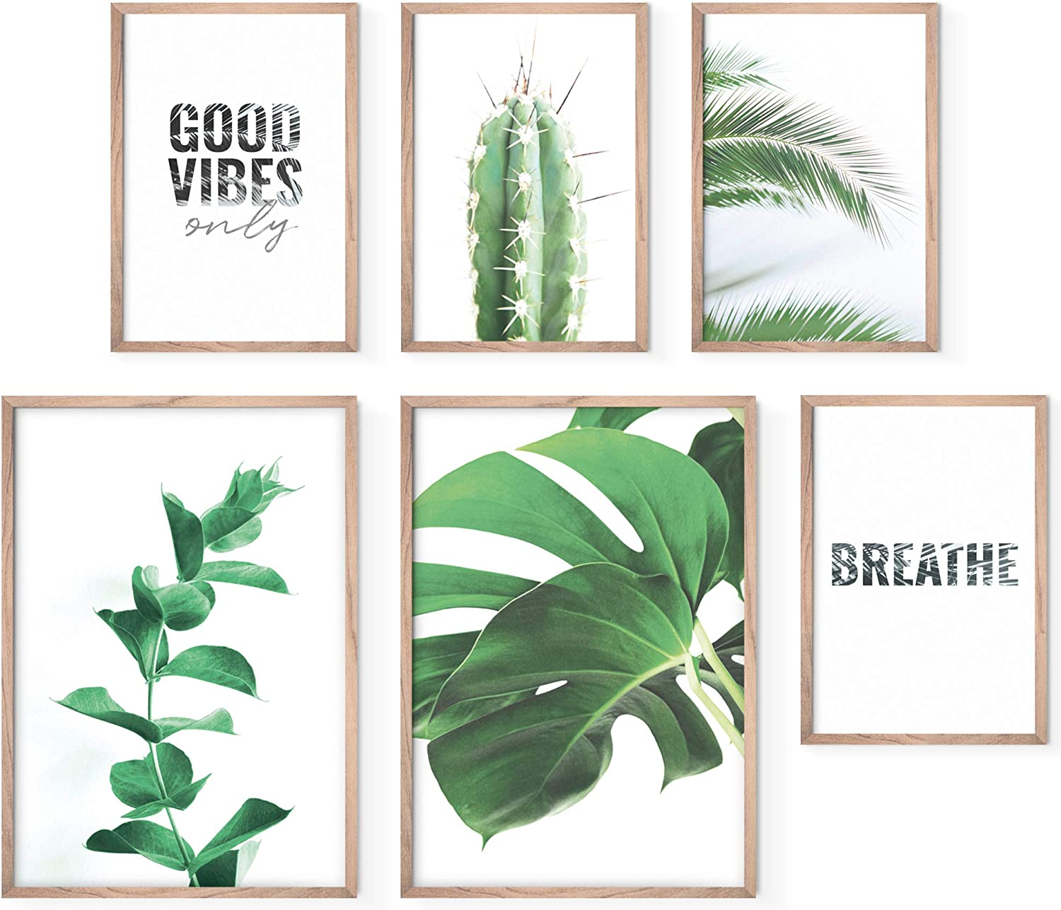 Bold Design Aesthetic Posters Set - Stylish Photo and Quote Prints - 6 Unframed Plant Wall Art Pictures - 2x 17x11; 4x 11x8 - Wall Posters & Prints for Home or Office - Posters for Living Room