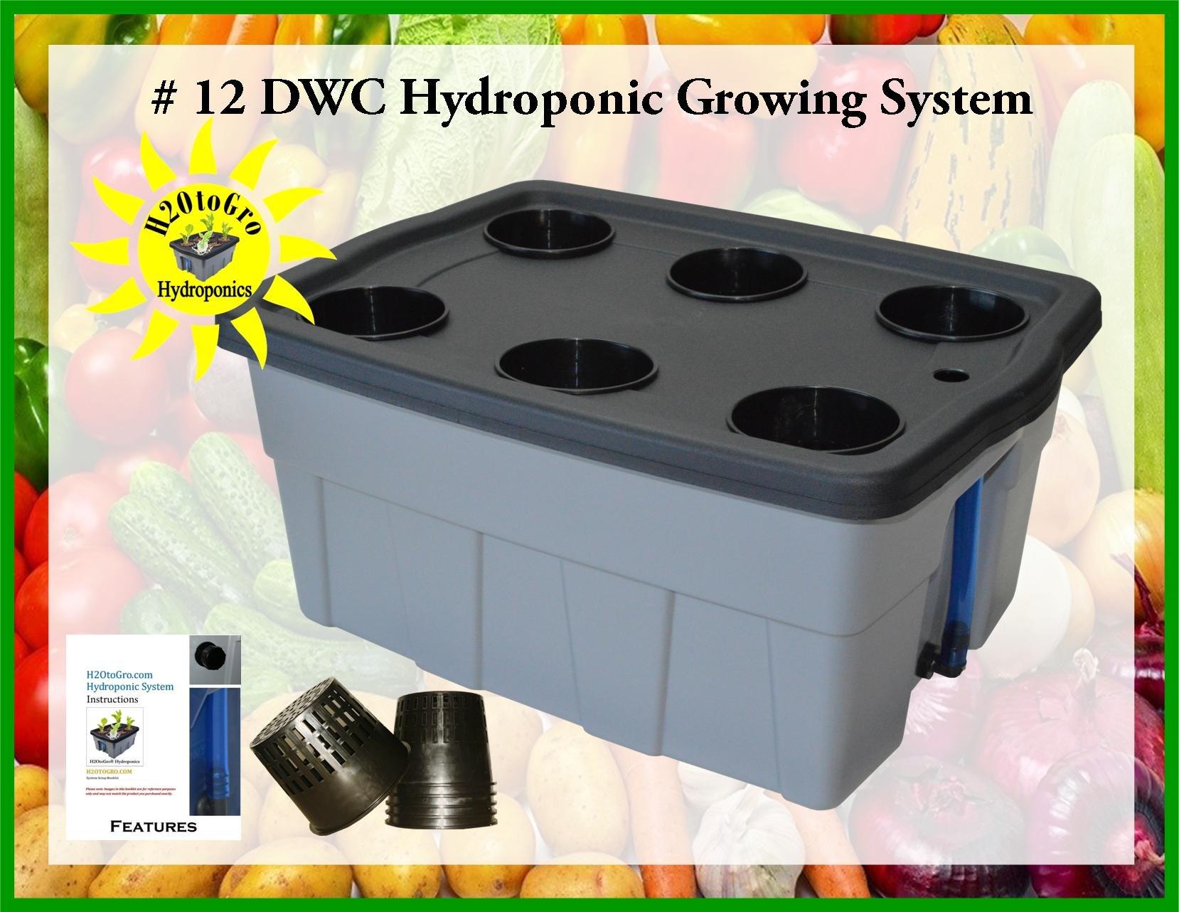 DWC Hydroponic Grow system #12 6-site H2OtoGro by H2OToGro