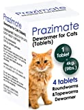 Prazimate Roundworm and Tapeworm Dewormer for Cats 4 Tablets