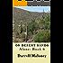 On Desert Sands: Alone: Book 6
