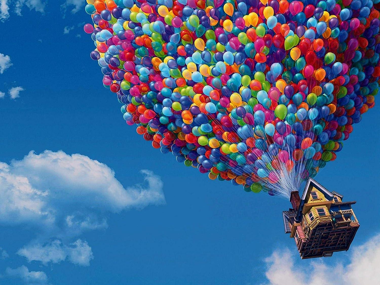 Up Pixar Cartoon Movie Poster - 18 × 24 Inch