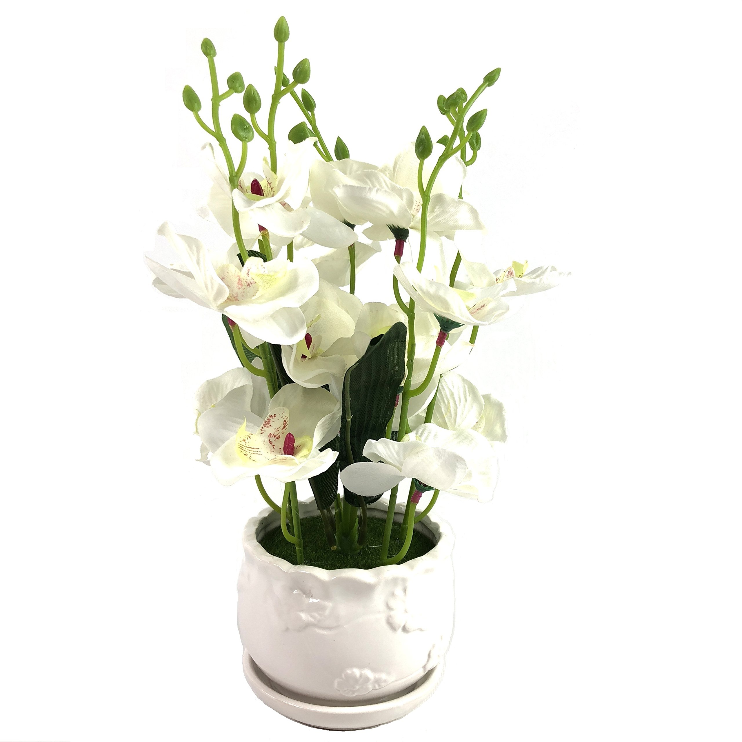 PEPPERLONELY Brand 13'' H Artificial Ceramic Potted Plant Orchid, White