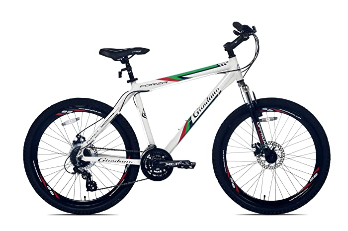 Giordano Forza Mountain Bike 26er review