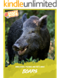 Unbelievable Pictures and Facts About Boars