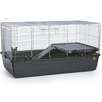 Prevue Pet Products 528