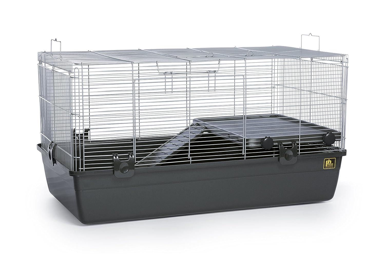 hamster-mobilnoe