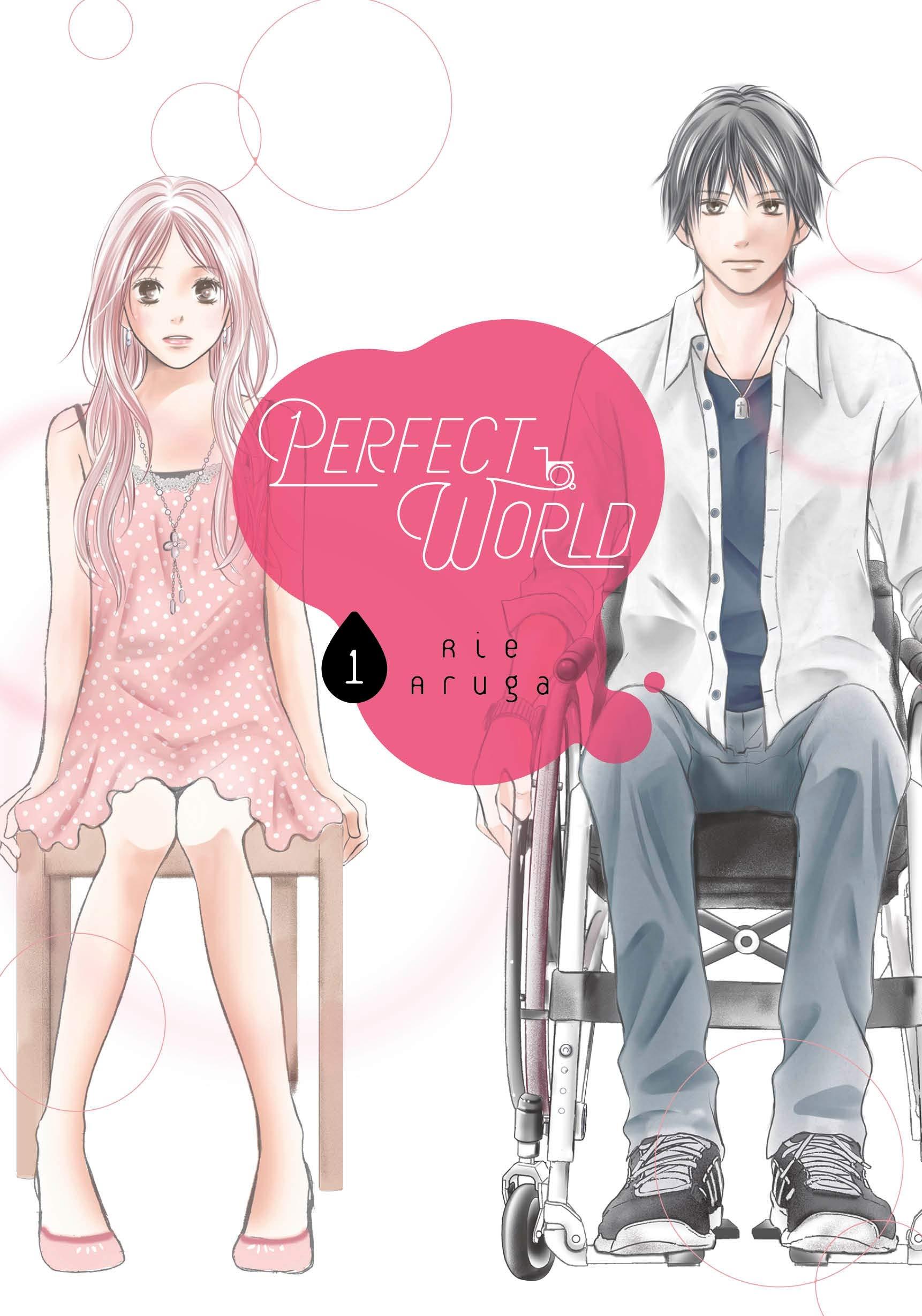 Perfect World 1: Amazon.in: Aruga, Rie: Books