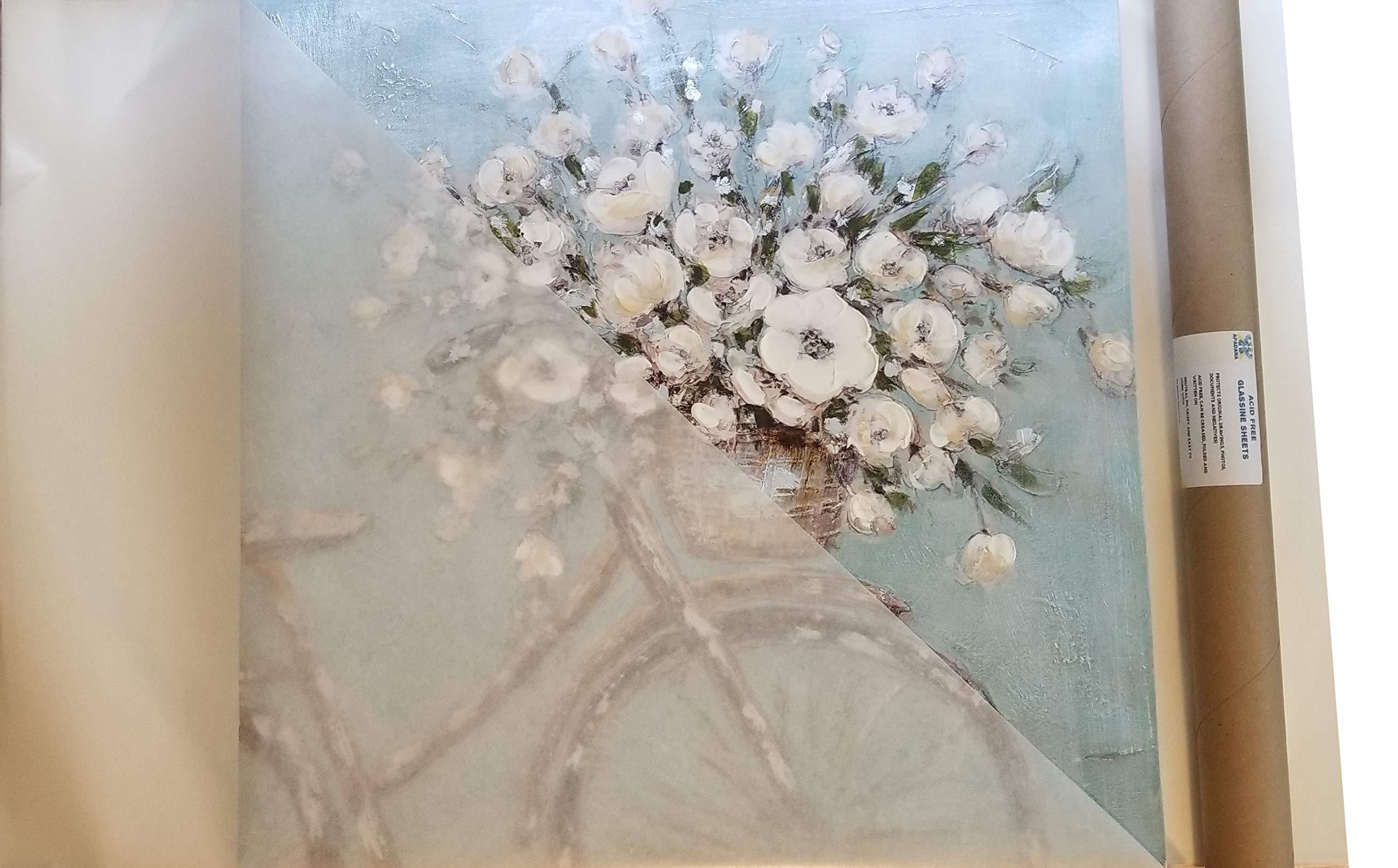Apadana Acid Free Glassine Paper 25 Sheets 24 x 36 Inches by APADANA