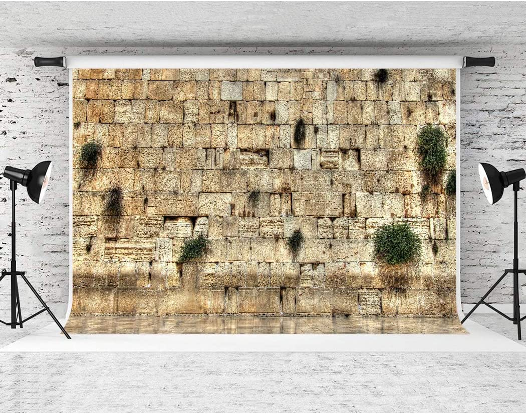 Western Wall Jerusalem City Backdrop Soft Fabric for Party Decor YouTube Photo Video Studio Props F-FUN SOUL 7x5ft DSFS020