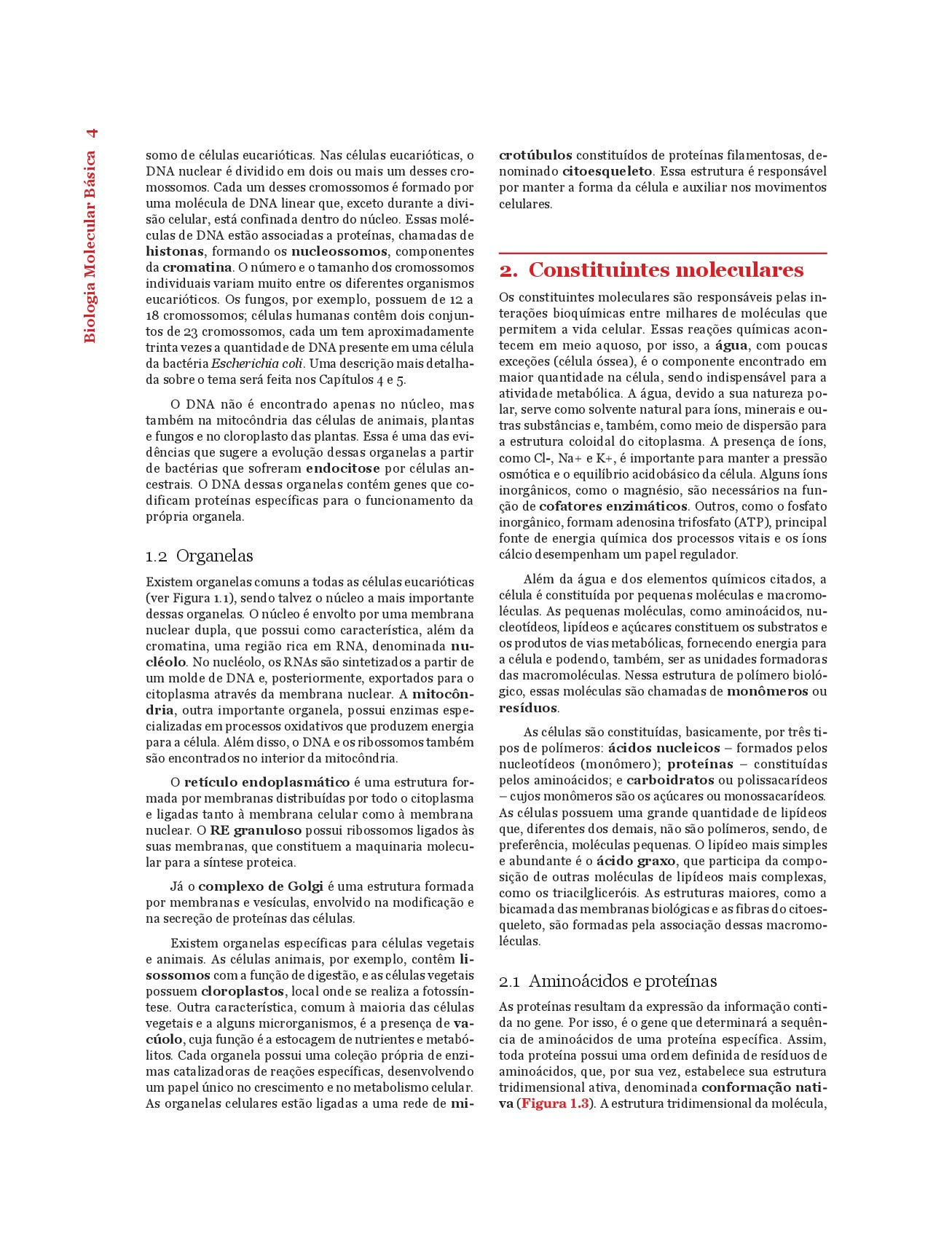 Biologia Molecular Básica (Em Portuguese do Brasil): Amazon ...