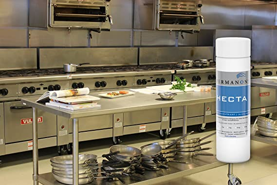 Permanon, Hecta, concentrado, limpiador de cocina para grasa de cocina en acero inoxidable, extractor rápido de grasa para la cocina: Amazon.es: Salud y cuidado personal