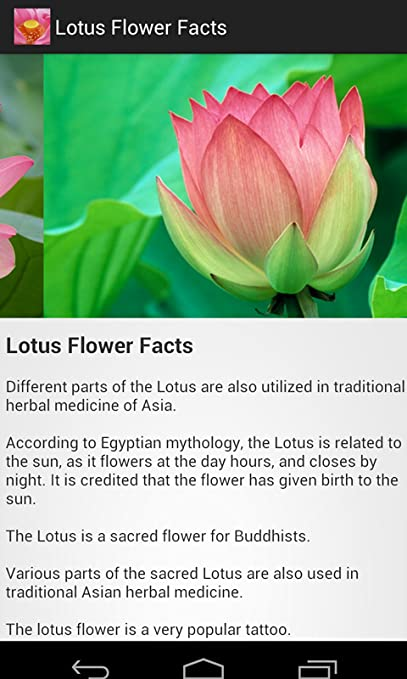 Amazoncom Lotus Flower Facts Appstore For Android