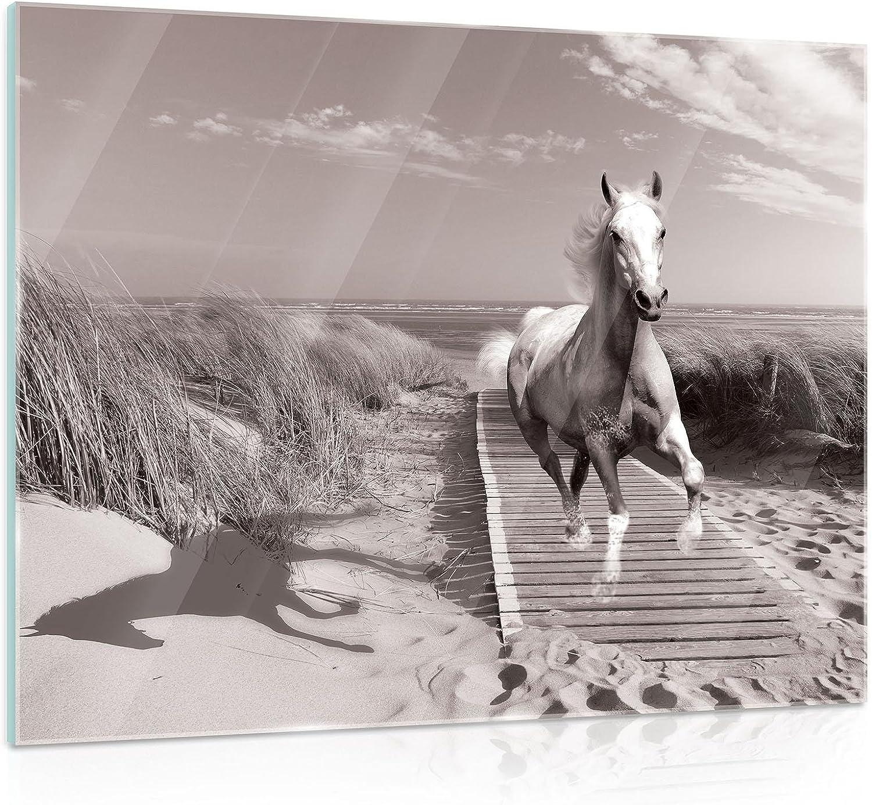 FORWALL - Cuadro de Cristal para Pared con Imagen de Caballo en la Galope en la Playa, con Imagen de Paisaje Natural AMF10229_GT, mar mar, océano, Vidrio, Beige, G5 (80cm. x 60cm.)