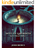 Into the Labyrinth: Mage Errant Book 1