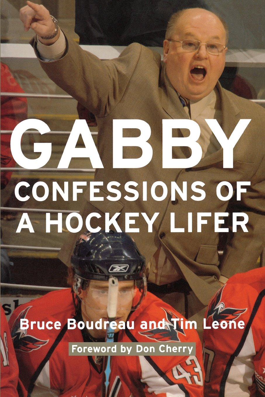 Download Gabby: Confessions of a Hockey Lifer pdf