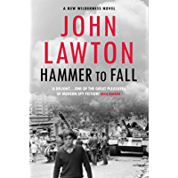 Hammer to Fall: For readers of John le Carré, Philip Kerr and Alan Furst. (Joe Wilderness 3)