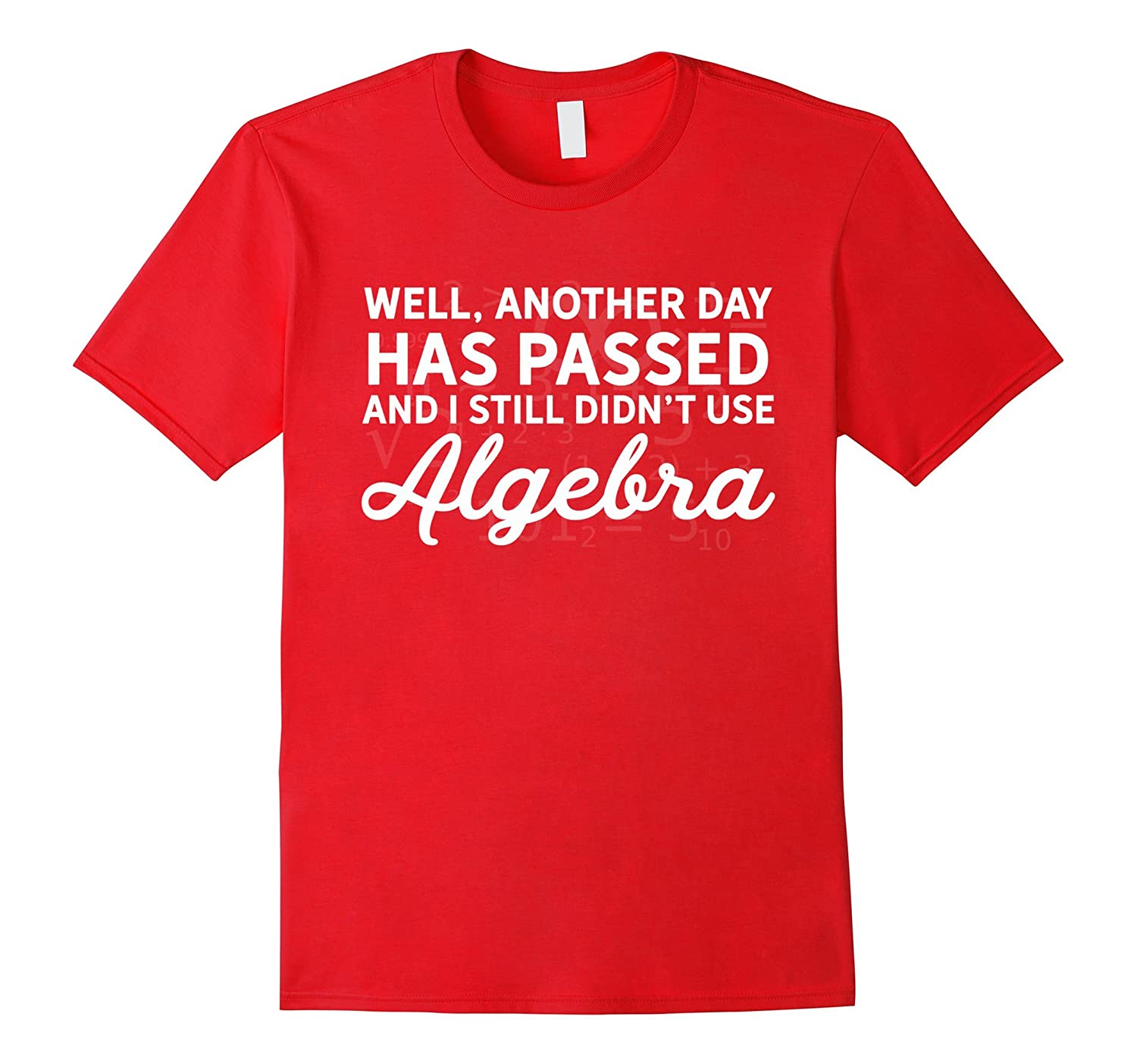 Another Day Without Algebra Funny Maths Themed T-Shirt-FL