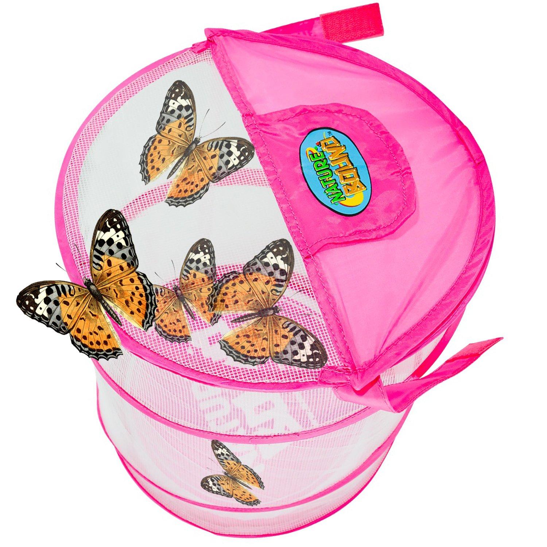 amazon com nature bound pink bug u0026 butterfly village habitat kit