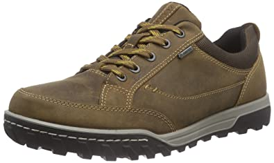 ECCO Men's Urban Lifestyle Gore-tex Hiking Shoe, Camel/Cocoa Brown, 40