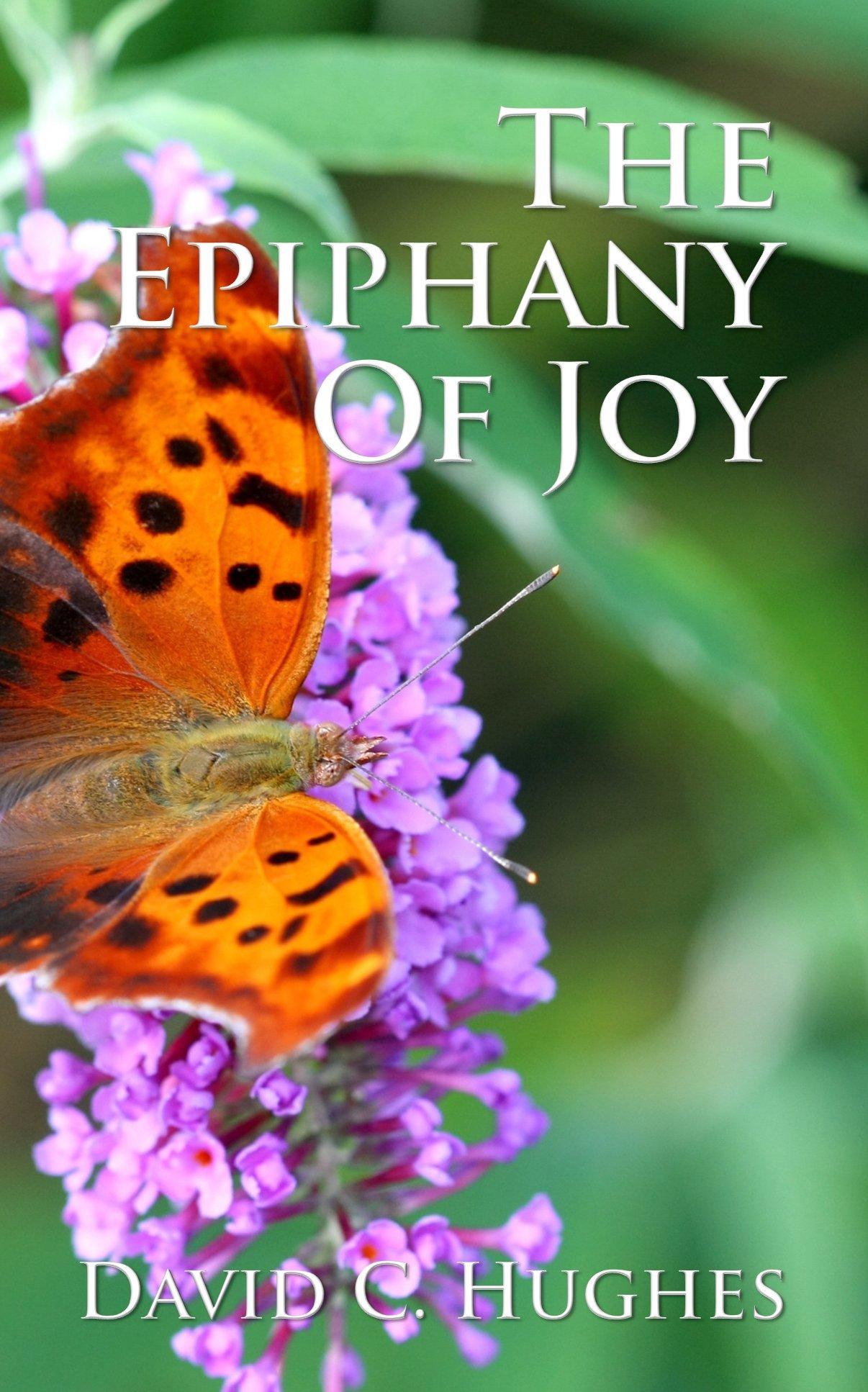 Download The Epiphany of Joy pdf