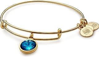 """product image for Alex and Ani Bangle Bar Imitation Birthstone Bangle Bracelet, 2.75"""""""