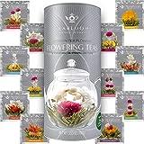 Teabloom Flowering Tea Gift Set - 12 Unique Blooming Tea Flowers - Hand-Tied Green Tea Leaves & Edible Flowers - Gift Caniste