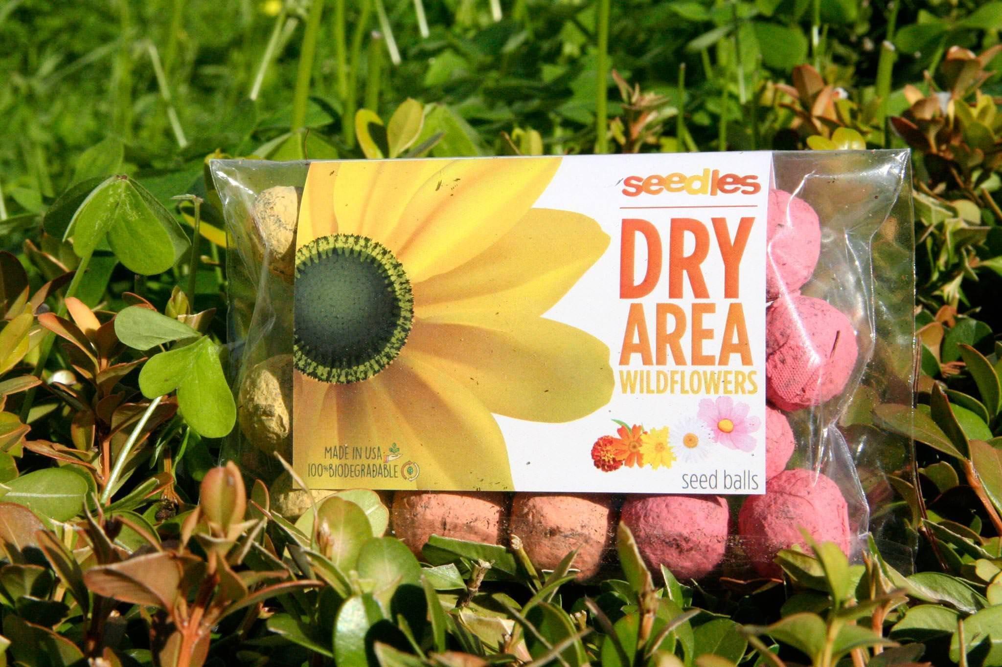 Seedles Dry Area Easily Grow Wildflowers