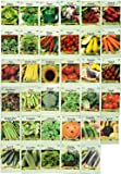 Set of 35 Assorted Vegetable & Herb Seeds 35 Varieties Create a Deluxe Garden All Seeds are Heirloom, 100% Non-GMO! by…