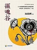 摄魂谷 (中国推理悬疑大师、《死亡通知单》作者周浩晖经典代表作,可以媲美东野圭吾的中国推理作家!) (刑警罗飞系列)