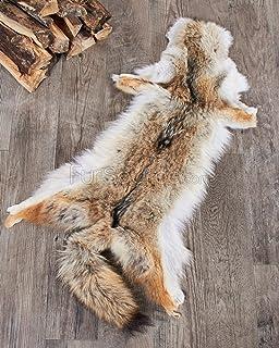 amazon com tanned coyote hide 2 quality fur coats pelt