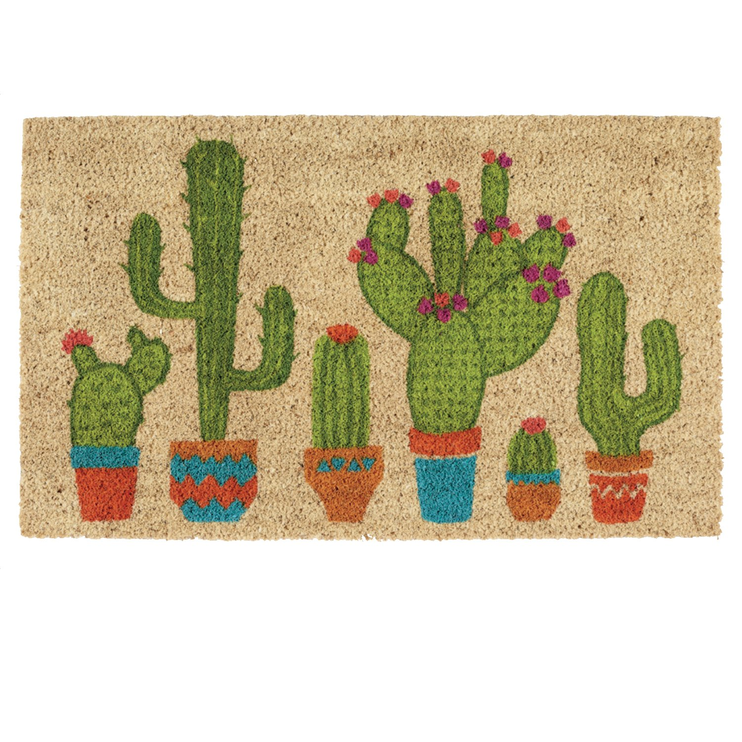 DII Indoor/Outdoor Natural Coir Easy Clean Rubber Non Slip Backing Entry Way Doormat for Patio, Front Door, All Weather Exterior Doors, 18 x 30 - Cactus by DII