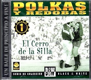 Gustavo Siordia - Polkas Y Redovas: El Cerro De La Silla - Amazon.com Music