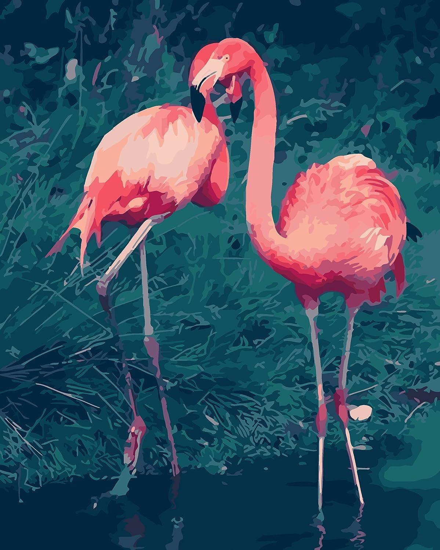 Fuumuui Lienzo de Bricolaje Regalo de Pintura al óleo para Adultos niños Pintura por número Kits Decoraciones para el hogar -Pájaros Rojos 16 * 20 Pulgadas