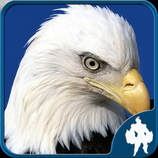 Birds Jigsaw Puzzles - Bird Portrait