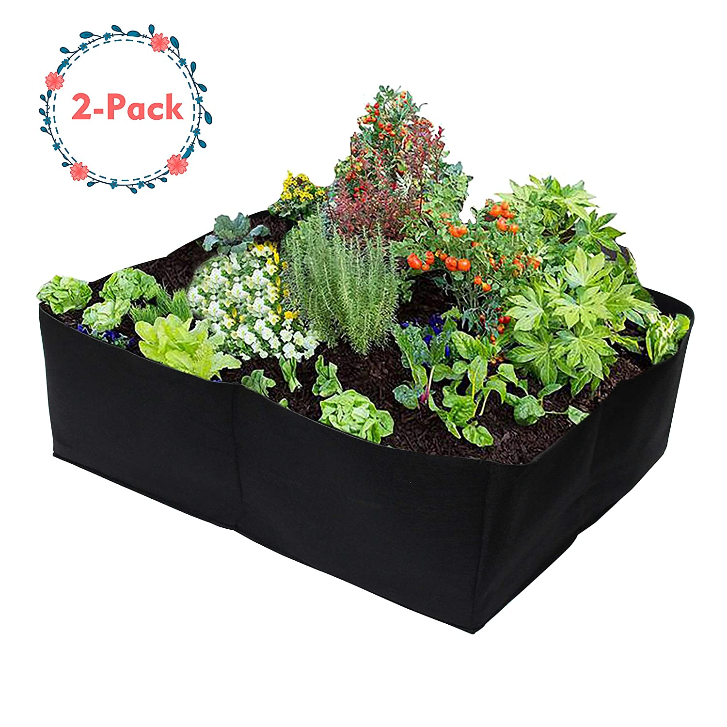 Gardzen 2 Pack Divided Raised Vegetable Bed, Square Foot Gardening 2Feet x 2Feet - Having Your Own Garden