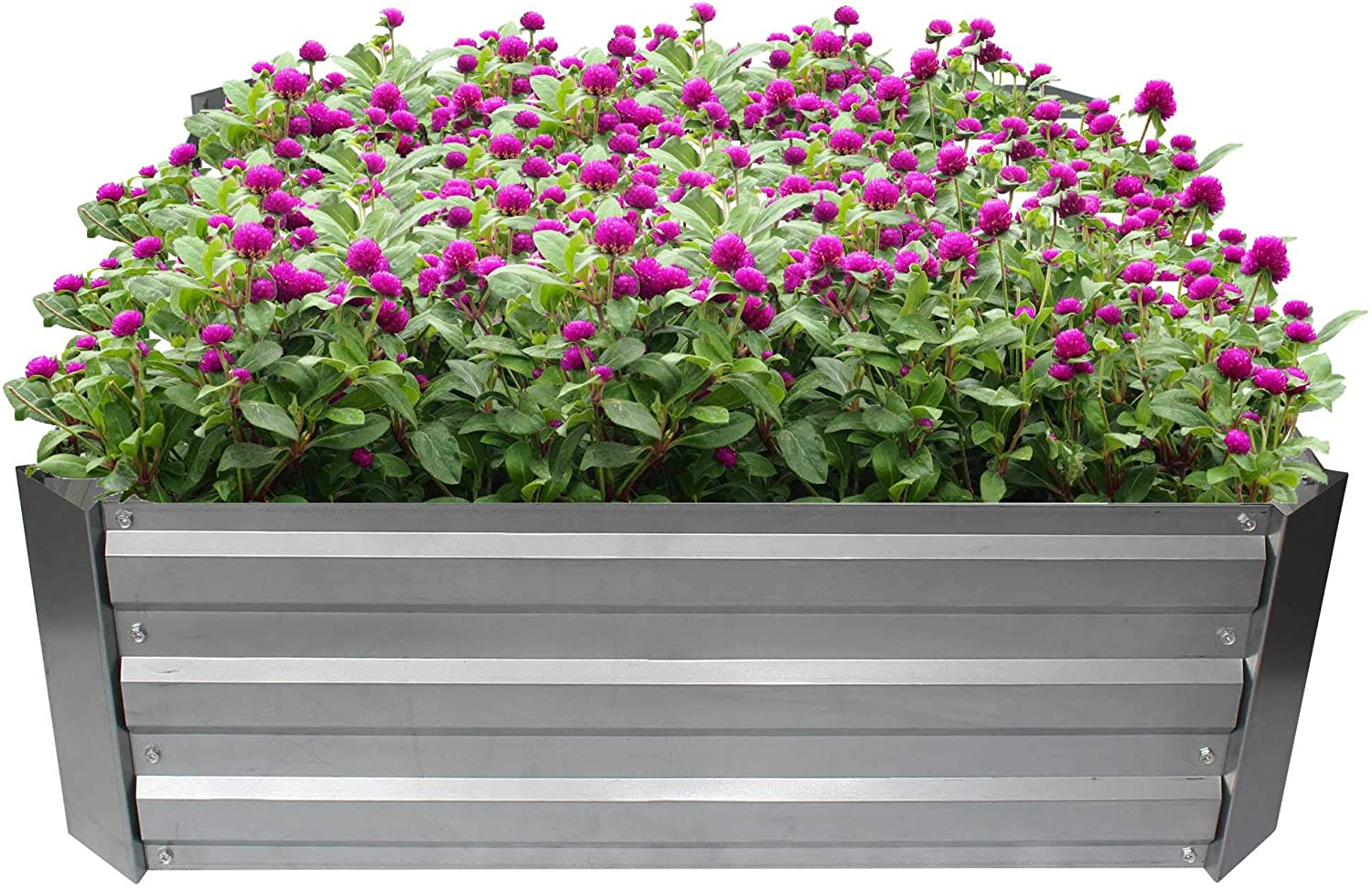 Outdoor Raised Garden Bed,Galvanized Metal Garden Planter Box for Flowers,Herbs and Vegetables,Growing Garden Bed Kit for Backyard,Patio