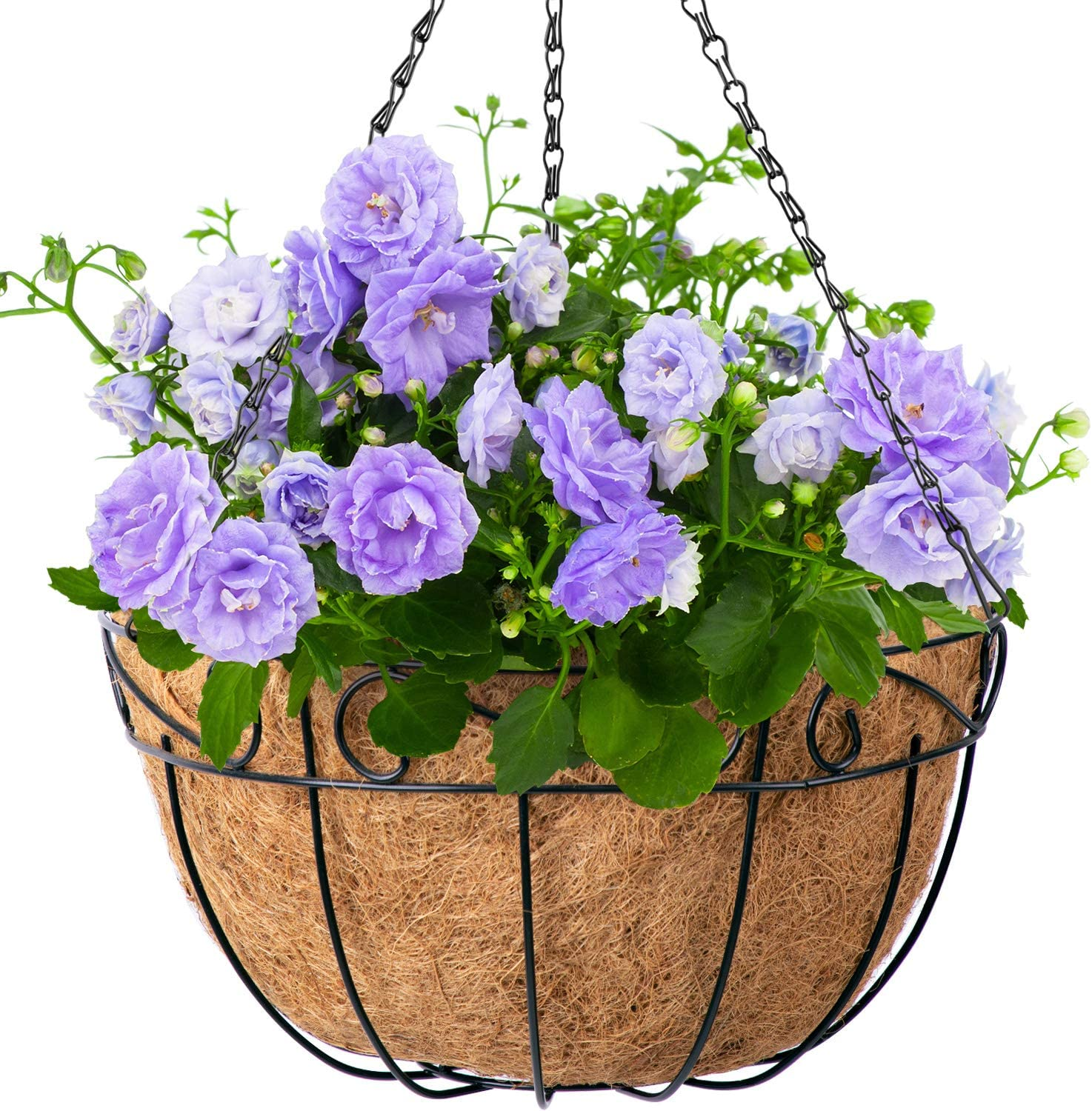 4 Pack Metal Hanging Planter Basket With Coco Coir Liner 14 Inch Round Wire Plant Holder With Chain Porch Decor Flower Pots Hanger Garden Decoration Indoor Outdoor Watering Hanging Baskets Amazon Co Uk Kitchen