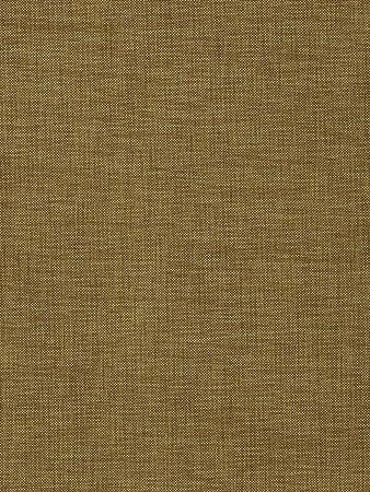Amazon.com: Tela para tapicería con textura dorada de ...
